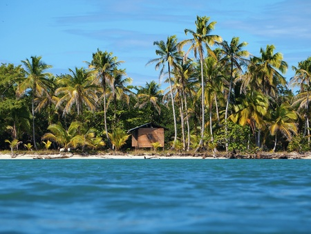 stilt house: Tropical beach with coconuts trees and a hut, caribbean Stock Photo
