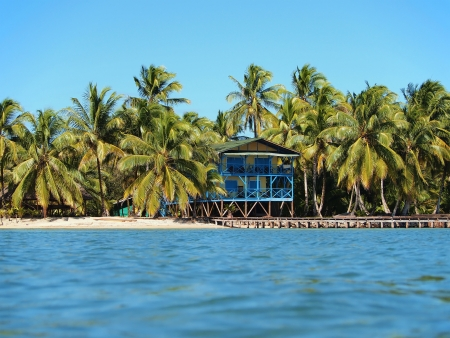 Stilt hotel on the beach with coconut trees and a dock
