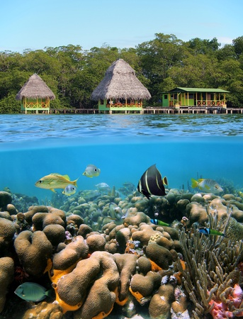 panama: Underwater and surface view with cabins over the sea and a coral reef with tropical fish, Caribbean, Bocas del Toro, Panama