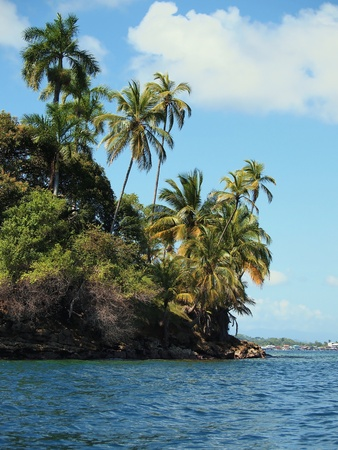 archipelago: Tropical island with beautiful palm trees