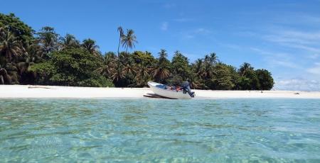 bahamas: Tropische wit zand strand met helder water en een weelderige vegetatie