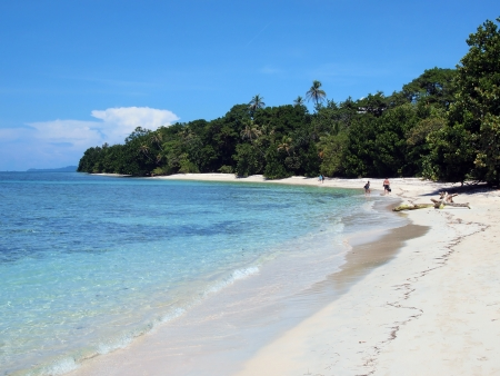 Tropical white sand beach with clear water  and lush vegetation photo