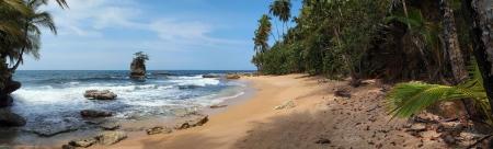 Panorama sur une plage vierge avec des rochers et de la végétation luxuriante, des Caraïbes Banque d'images