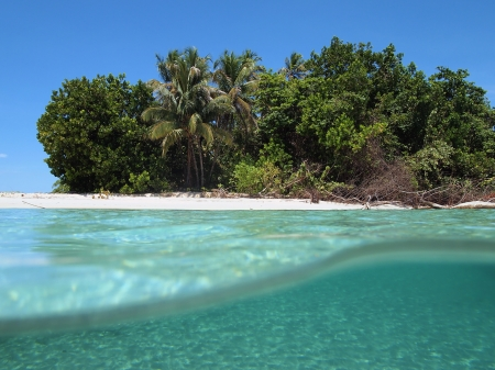 View from the water surface of a tropical beach in the Caribbean Stock Photo - 14750082