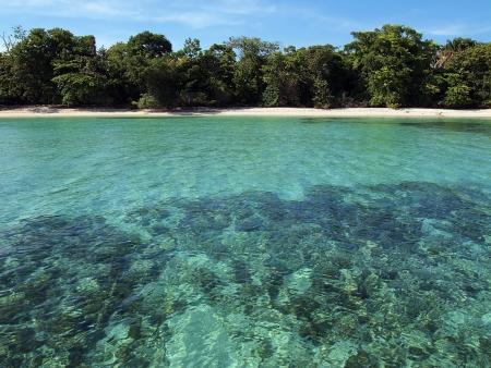 unspoiled: Playa virgen de arena con aguas turquesas de la laguna