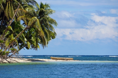 Tropical beach with beautiful coconut trees and a dugout canoe, Bocas del Toro, Caribbean sea, Panama Stock Photo - 16962207