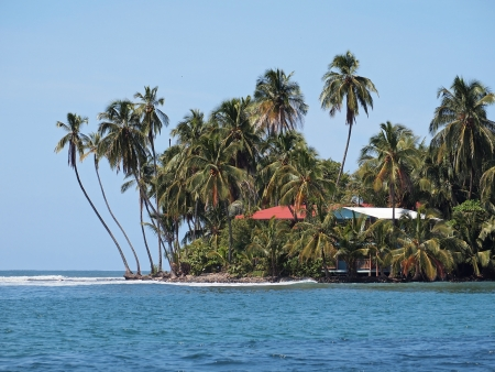 Caribbean house by the sea under beautiful coconut palm trees Stock Photo - 17709963