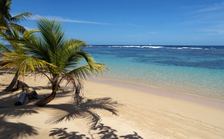 A piece of paradise on a tropical beach with coconut trees and transparent waters of its lagoon , Caribbean sea