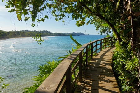 colon panama: Footbridge with lush vegetation along the coast in a Caribbean island Stock Photo