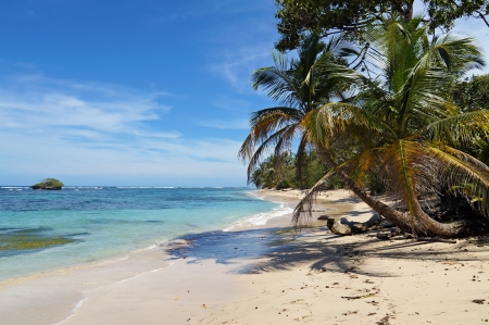 Tropical wild sandy beach with an islet, coconut trees and turquoise waters photo