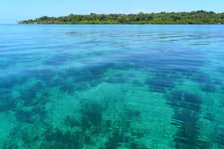exotism: Transparent and calm waters in the Caribbean sea with Solarte island in background, Bocas del toro, Panama