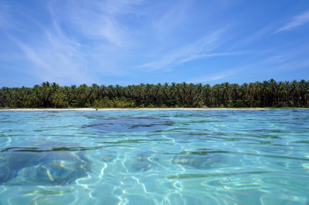 Vue de la surface de l'eau sur une île des Caraïbes avec une végétation tropicale luxuriante et une eau cristalline, Zapatillas Keys, archipel de Bocas del Toro, au Panama
