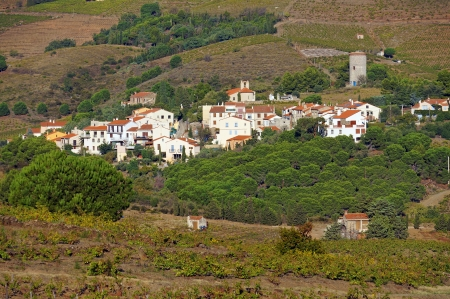 vermilion coast: Mediterranean village of Cosprons and its vineyard fields, Roussillon, Vermilion coast, France Stock Photo
