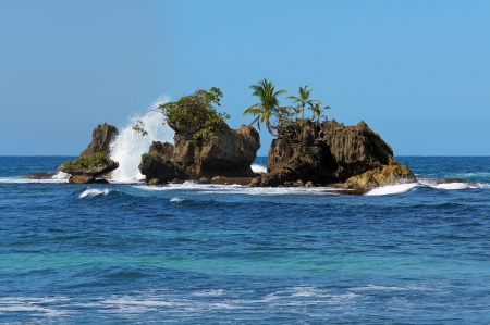 islet: Rocky islet with coconut trees, Bocas del Toro archipelago, Bastimentos island, Caribbean sea