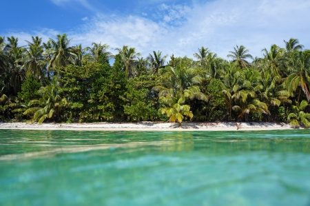 View from the water surface on a tropical beach with lush vegetation, Caribbean, Zapatillas isles, Bocas del Toro photo