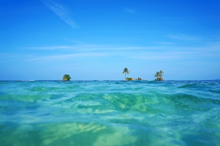 Horizon over water with small islets and coconut tree, Caribbean sea, Zapatillas Keys, Bocas del Toro, Panama