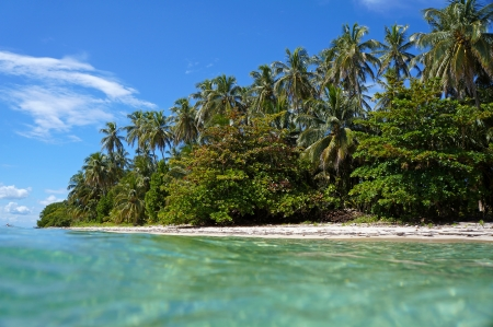 Beach taken from the water surface with beautiful tropical vegetation, Caribbean sea, Zapatillas islands, Bocas del Toro, Panama photo