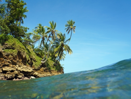 islet: View from water surface with islet and coconut palm trees, Caribbean sea, Bocas del Toro, Stock Photo