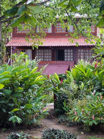 viejo: Tropical house with lush vegetation, Puerto Viejo, Costa Rica, Central America