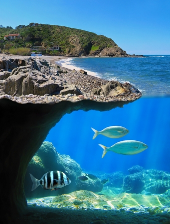vermilion coast: Surface and underwater view of a Mediterranean sea cove, Cote Vermeille, Pyrenees Orientales, Roussillon, France
