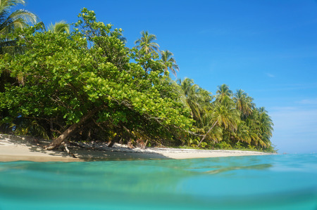 Tropical sandy beach with beautiful vegetation, view from the water surface, Caribbean sea, Costa Rica