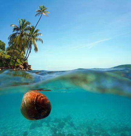 Boven en onder water uitzicht met een kokosnoot drijft op het wateroppervlak en het eiland rand met kokospalmen leunend over de zee