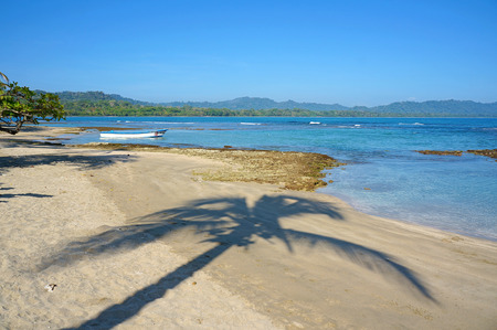 viejo: Shade of palm tree on a peaceful beach, Caribbean sea, Puerto Viejo de Talamanca, Costa Rica Stock Photo