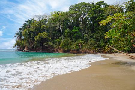 Tropisch strand met prachtige vegetatie, Punta Uva, Puerto Viejo, Costa Rica
