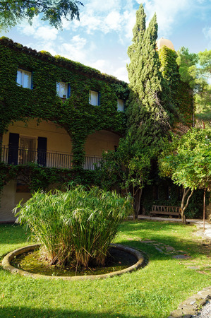 vermilion coast: Backyard with old mansion covered by ivy in south of France, Collioure, Roussillon Stock Photo