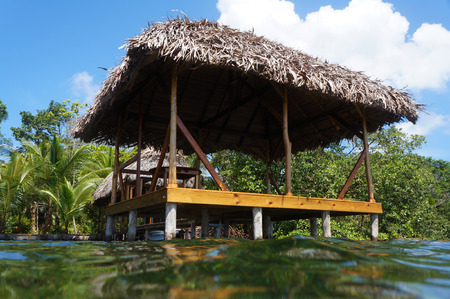 thatched: Thatched hut on stilts viewed from the sea surface
