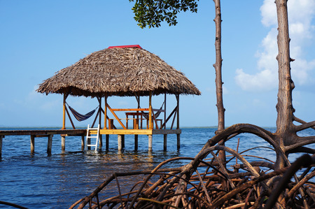 thatched: Thatched hut with hammock over the sea and mangrove tree roots in foreground Stock Photo