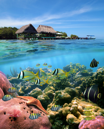 waterline: Over and underwater split view with a Caribbean restaurant over the sea and a coral reef with tropical fish, Crawl Cay, Caribbean, Bocas del Toro, Panama Stock Photo