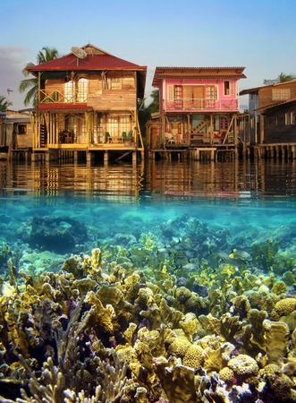 Split view with tropical houses over water and coral reef fish underwater, Caribbean sea, Panama photo