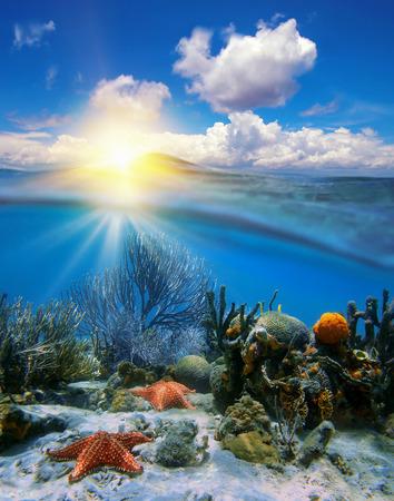 Bewölkten blauen Himmel mit Sonnenuntergang am Horizont und durch Wasserlinie aufgeteilt, Unterwasser-Korallen mit Seesternen Standard-Bild - 29138135