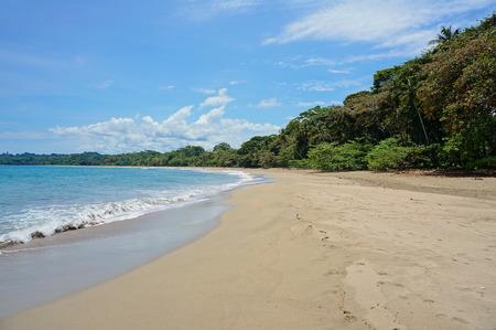 viejo: Pristine beach of Cocles on the Caribbean shore of Costa Rica, Puerto Viejo de Talamanca