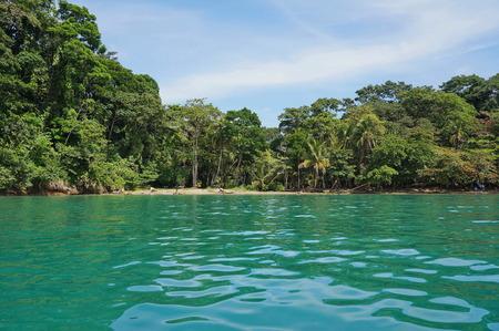 uva: Caribbean coast of Costa Rica in Punta uva, Puerto Viejo de Talamanca Stock Photo
