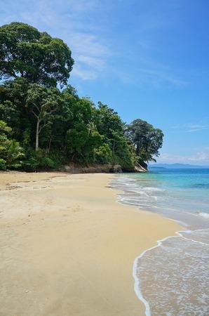 viejo: Pristine sandy beach in Costa Rica with lush tropical forest, Punta Uva, Puerto Viejo de Talamanca