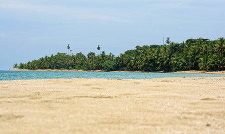 viejo: Beach sand in foreground and tropical shore with lush vegetation at the horizon, Caribbean, Costa Rica, Punta Uva, Puerto Viejo