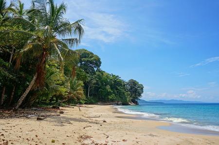uva: Caribbean beach with luxuriant tropical vegetation in Costa Rica, Punta Uva, Puerto Viejo de Talamanca, Central America Stock Photo