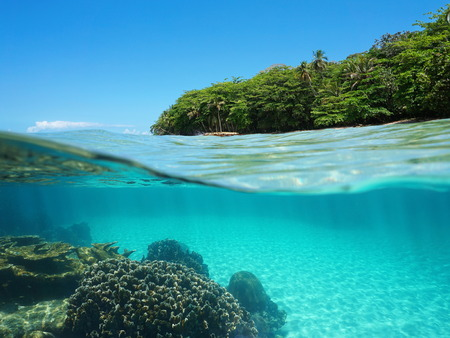 under the sea: Split view over and under sea surface with lush tropical shore above waterline and corals with sand underwater, Caribbean, Puerto Viejo, Costa Rica Stock Photo