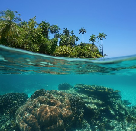 Split shot of a lush tropical island above water surface and coral reef underwater, Caribbean sea, Bocas del Toro, Pana