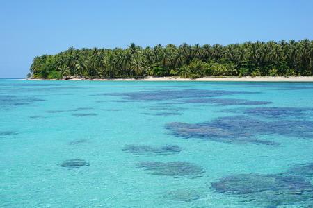 pristine coral reef: Acqua turchese con coralli sotto la superficie del mare e un'isola tropicale incontaminata in background, Caraibi, Cayos Zapatilla, Panama