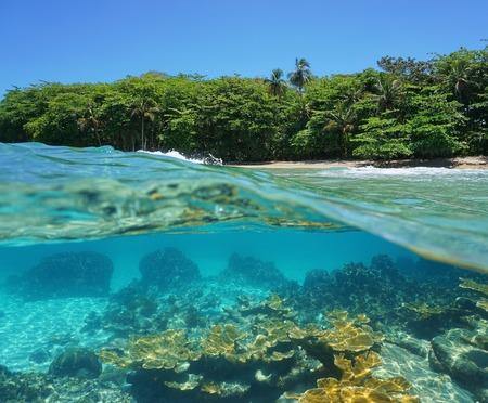 Split image half boven en onder water van een tropische kust met weelderige vegetatie en koralen onder de oppervlakte Caribische zee Costa Rica