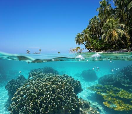 Split afbeelding boven en onder het zeeoppervlak met kokos bomen op tropische kust boven de waterlijn en koralen onderwater Caribische eilanden Zapatilla Panama