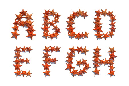 cushion sea star: Alphabet letters made of real starfish isolated on white background, letters A to H, part 1 of 3