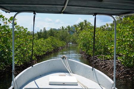bocas del toro: Boat through a small cut in the mangrove, archipelago of Bocas del Toro, Caribbean sea, Panama, Central America