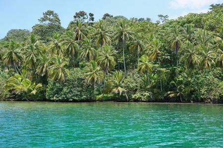 bocas del toro: Wild tropical coast with lush vegetation viewed from the sea, Loma Partida island, Bocas del Toro, Panama, Caribbean, Central America Stock Photo