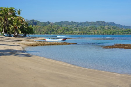 limon: Peaceful beach on the Caribbean coast of Costa Rica, Puerto Viejo de Talamanca, Limon, Central America