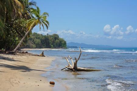 coastlines: Wild Caribbean coast in Costa Rica, Chiquita beach, Puerto Viejo de Talamanca