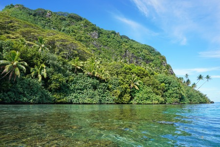 unspoiled: Coastal landscape with lush green vegetation on unspoiled shore, Huahine island, Pacific ocean, French Polynesia